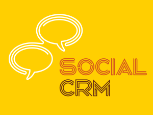 Social CRM Software Selection: Technical Requirements