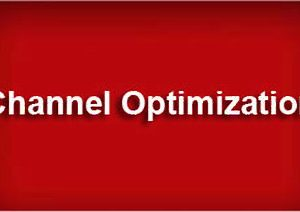 Organizational Channel Optimization Challenges